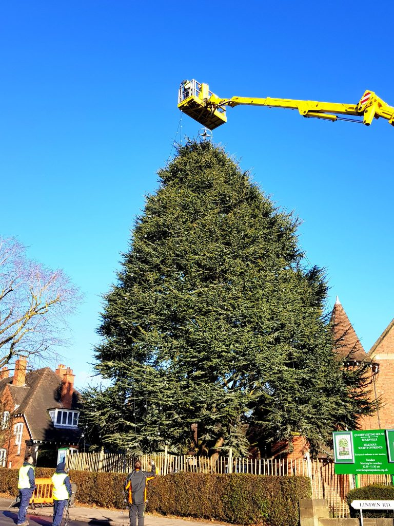Bournville Christmas Tree